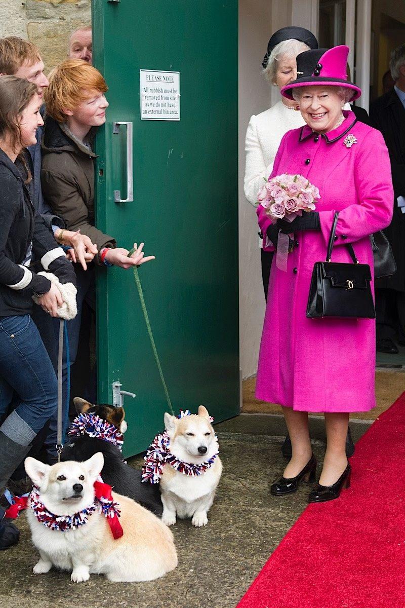 Queen Elizabeth fashion pink corgis